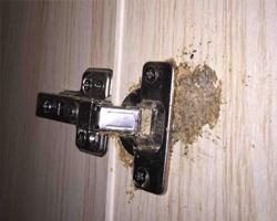 【糟心】柜门装铰链装成这样跟我说是运气不好?大家屋里有出现这种情况吗?无语!