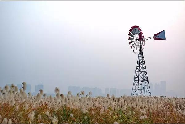 可能是武汉秋天最美的10个地方!不去拍照可惜了!