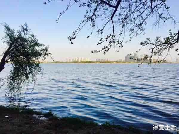 【花YOUNG武汉】湖边钓鱼、烧烤、玩纸牌,闻花香,日子赛神仙!
