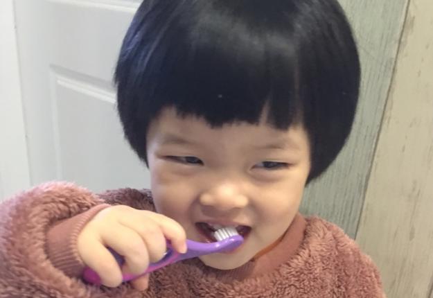 挪威森林这个牙刷,必须入!两只才24.9,1岁宝宝用起来刚刚好!