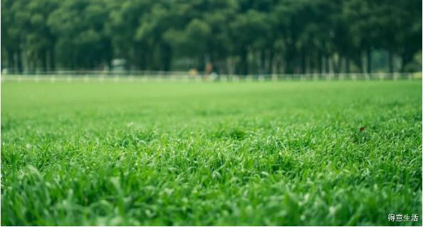 武汉将新增一大波公园和医院,分布在多个区,看看有你家门口的吗?