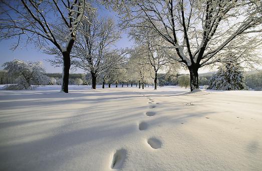 妖风四起,降温了!快来分享你的过冬神器!