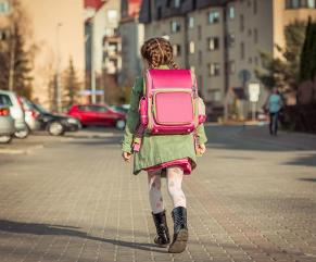 洪山区实验外国语小学和汉阳区玫瑰园小学,该怎么选啊?