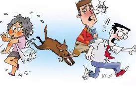 发病致死率近100%的狂犬病有克星了?