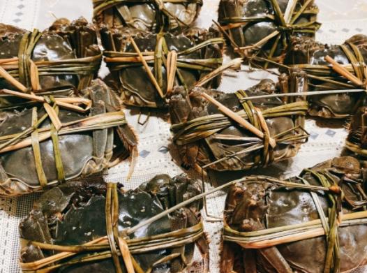 【我的吃蟹攻略】不可不吃滴螃蟹一条街里超多肥美大闸蟹!