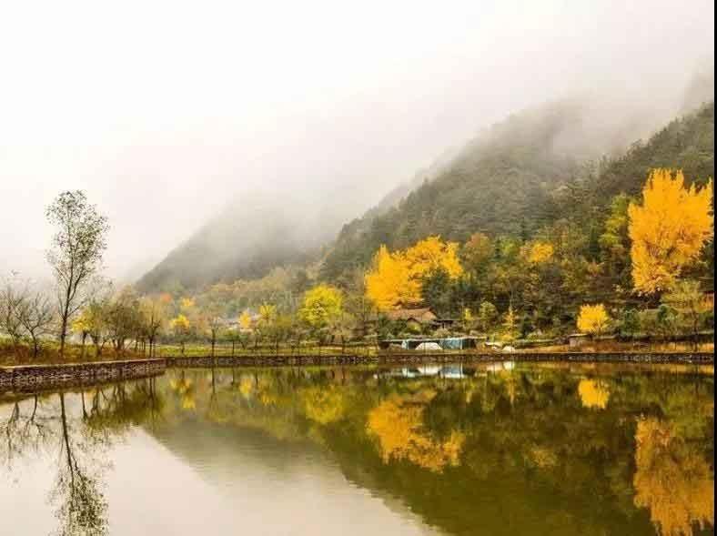 这么好的天气和时光,有约一起带孩子武汉周边玩的吗?