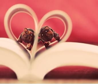 长期与文字为伴的86年编辑诚意征婚,希望对方大度有体谅之心!