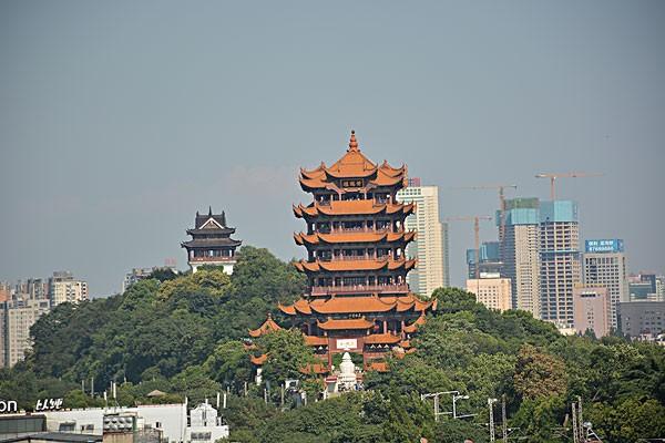 过早冒|武汉老年市民可以来免费游园欢度重阳!下周日汉马归来,经典线路重现!